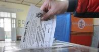 На референдуме в Донецкой области за самостоятельность региона проголосовало 89%