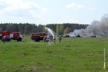 Под Тамбовом выгорела часть леса