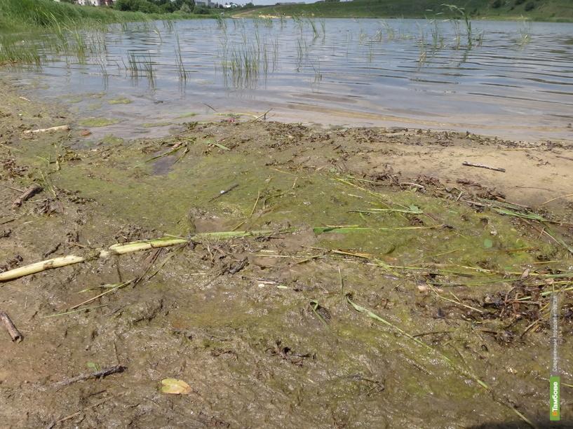 Пляжи Мичуринска не готовы к купальному сезону