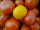 Тамбовские продукты могут появиться в магазинах по всей стране