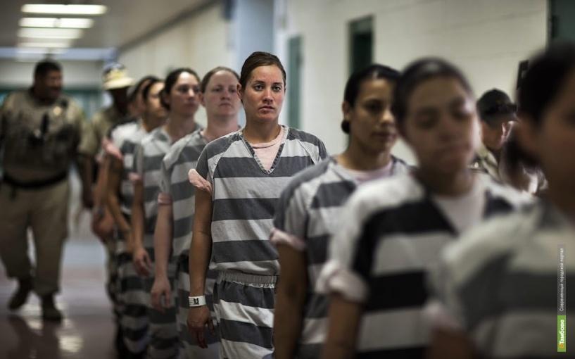 7,5% тамбовских заключенных не хотят нигде работать после освобождения