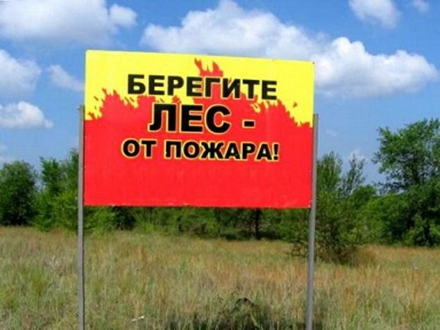 За полгода пожары уничтожили 10 гектаров тамбовских лесов