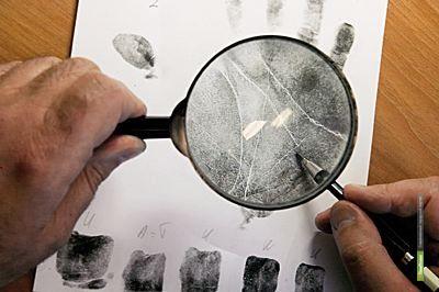Тамбовские эксперты-криминалисты обеспечили 50% доказательной базы всех уголовных дел