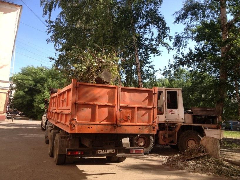 Из двора в центре Тамбова спиленные деревья и ветки вывезли спустя почти две недели