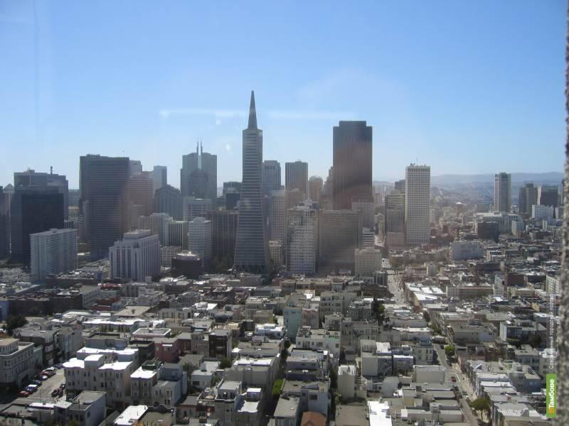 Воздух мегаполисов делает его жителей глупее
