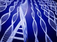 Генная терапия борется с лимфолейкозом