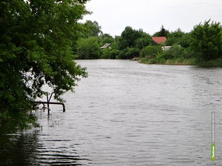 Озеру ВТамбове грозит экологическая катастрофа