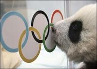 В программу Олимпиады-2014 включены три новые дисциплины