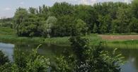 В посёлке Токарёвка утонул молодой парень