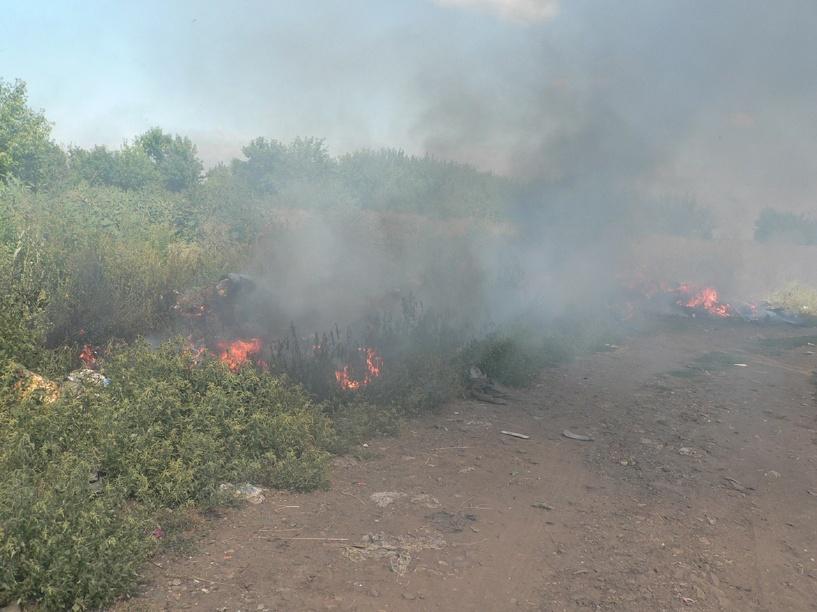 В Тамбовском районе сгорело 2 гектара лесной подстилки