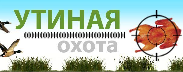 Портал ВТамбове запускает «Утиную охоту»