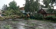 Дождь, гроза и ураганный ветер: в Мичуринске устраняют последствия разгулявшейся стихии