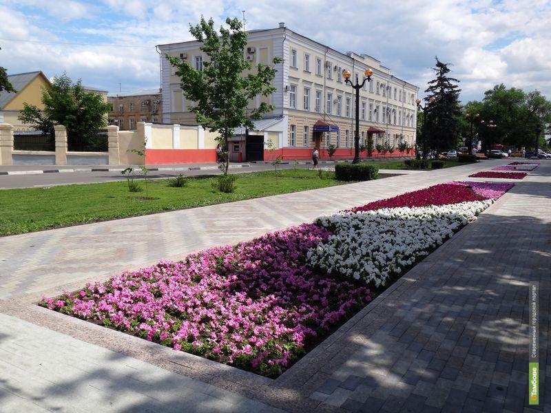 Этим летом в Тамбове посадят три миллиона цветов