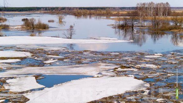 Тамбовский лед тронулся