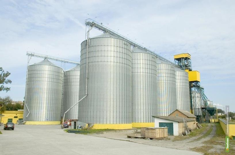 Немецкая компания Riela построит на Тамбовщине зерноперерабатывающий комплекс