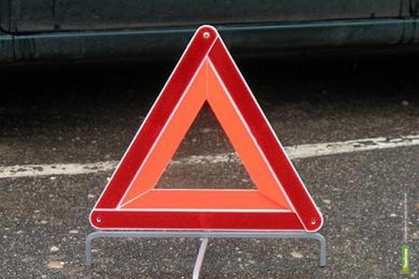 В Покрово-Пригородном под колеса авто попала 11-летняя девочка