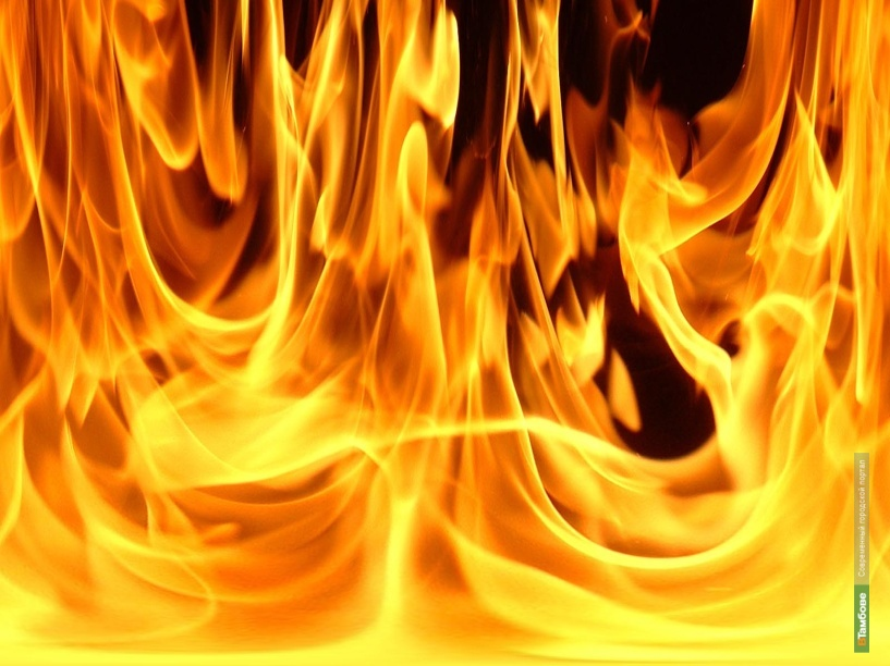 В Пушкарях потушили крупный пожар