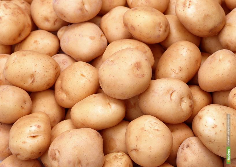 Россия с 1 июля запретила поставки картофеля из Евросоюза
