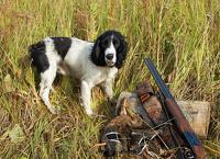 Весной охота в России начнется по новым правилам
