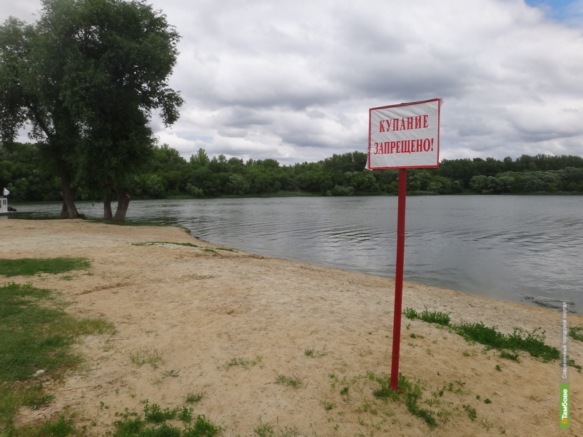 Санврачи не советуют купаться на двух пляжах Тамбова