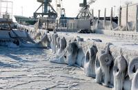 Черное море впервые за 30 лет покрылось льдом