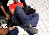 Коррида прямо на улице: в Малаге прохожий урезонил быка