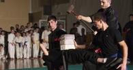 В Тамбове пройдёт масштабный фестиваль боевых искусств