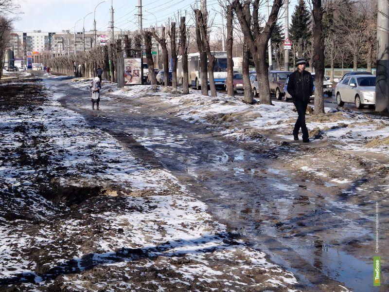 На бульваре Энтузиастов тамбовчане месят глину и грязь