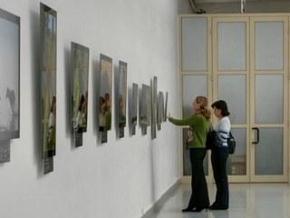 По области гастролирует выставка «Краски Тамбовщины»