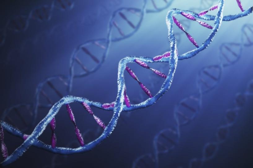 Ученые научились создавать сперматозоиды из клеток мужской кожи