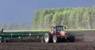 На весенне-полевые работы в регионе потратили 6 миллиардов рублей