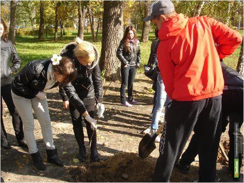Садовые работы сдружат тамбовских и иностранных студентов