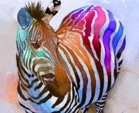 В ГИБДД предложили покрасить зебру разными цветами
