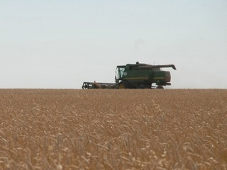 Сельское хозяйство Тамбовщины получит федеральную поддержку