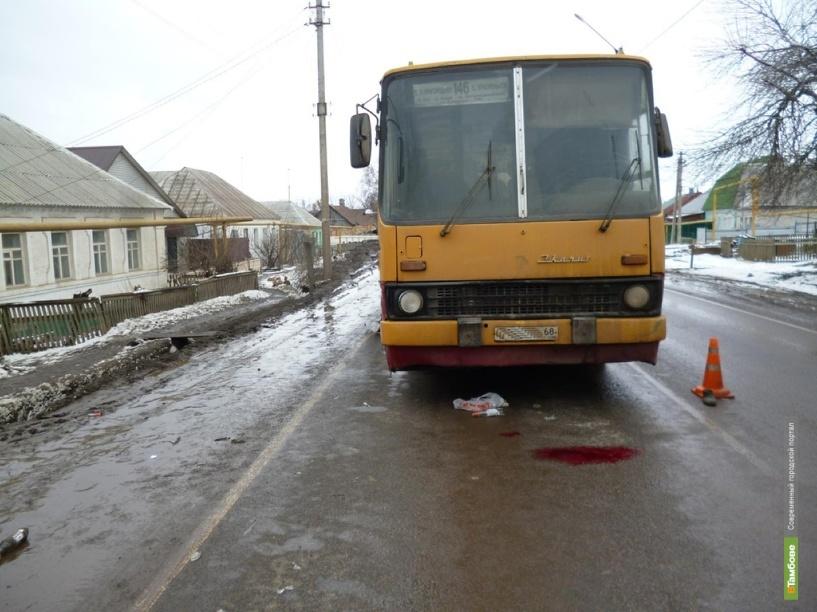 В Покрово-Пригородном пассажирский автобус сбил пешехода