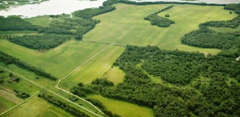 Жители области могут получить свой «тамбовский» гектар