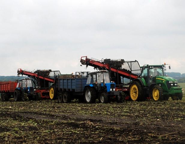 На полях Тамбовской области к концу подходят сельхозработы