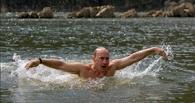 Кремль отреагировал на призыв Вина Дизеля к Путину облиться ледяной водой