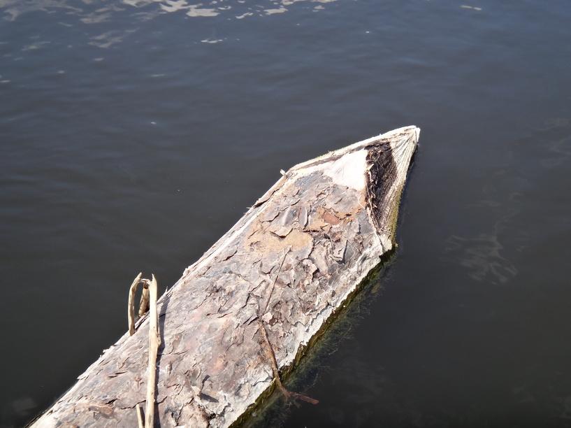 Утонувшая в Токаревском районе девочка не смогла самостоятельно перейти мост