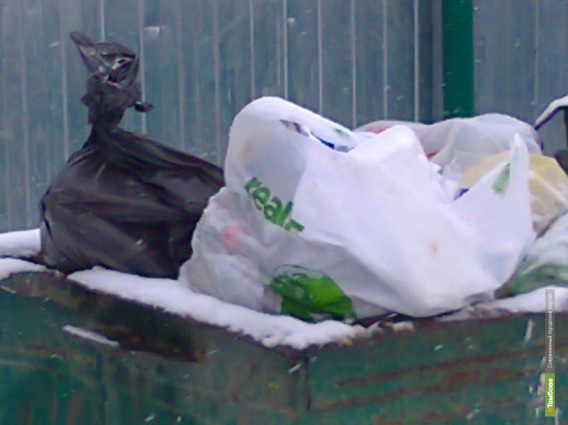 Тамбовчане просят у губернатора мусорные баки