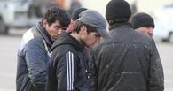 С территории Тамбовщины выдворили очередную партию мигрантов