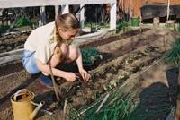 Садоводов освободят от уплаты налогов