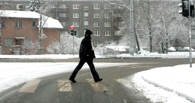 В каждом третьем ДТП на новогодних каникулах участвовал пешеход