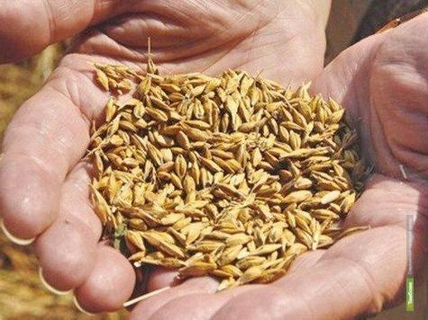 «Школа Агробизнеса - Тамбов» откроется в Татаново