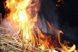 В Тамбовской области огонь уничтожил почти 300 тонн сена