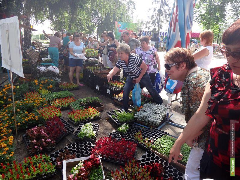 В этом году тамбовский Фестиваль цветов продлится дольше обычного