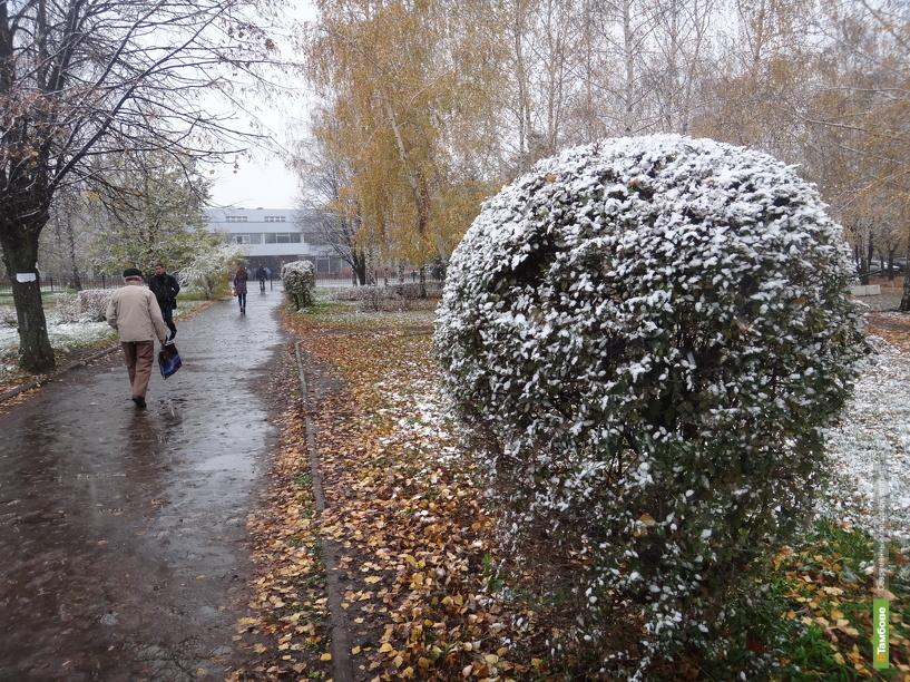 В Тамбове выпал первый снег