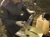 """У тамбовского пенсионера нашли 18000 бутылок """"левого"""" алкоголя"""