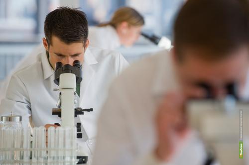 Ученые нашли лекарство от героиновой зависимости