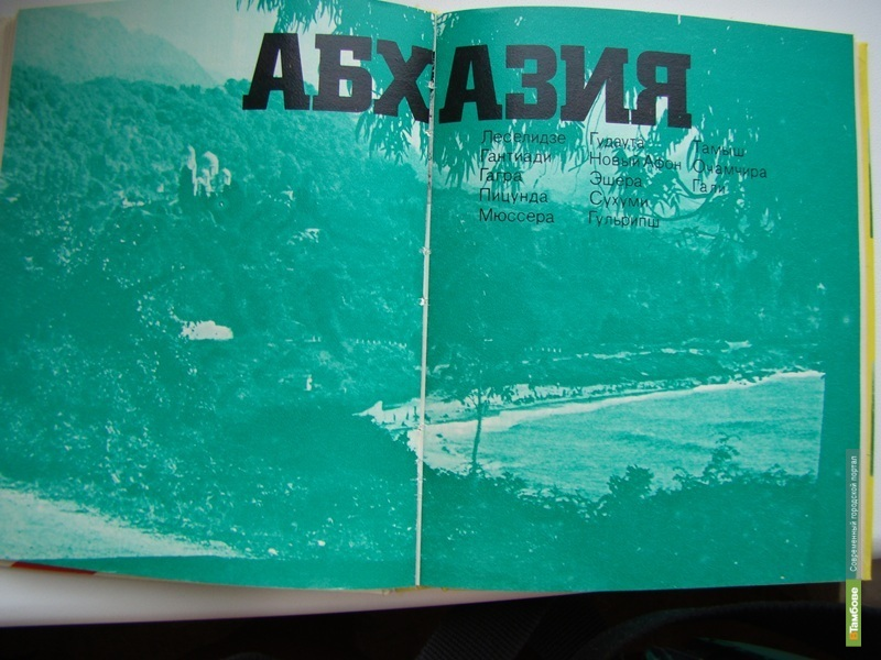 Гости из Абхазии привезут в Тамбов книги о своей республике